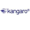 Если металлоканцелярия, то только Kangaro!